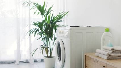How to take your laundry organisation to the next level